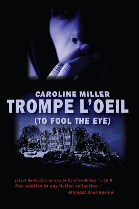 image of Book cover for Trompe-loeil